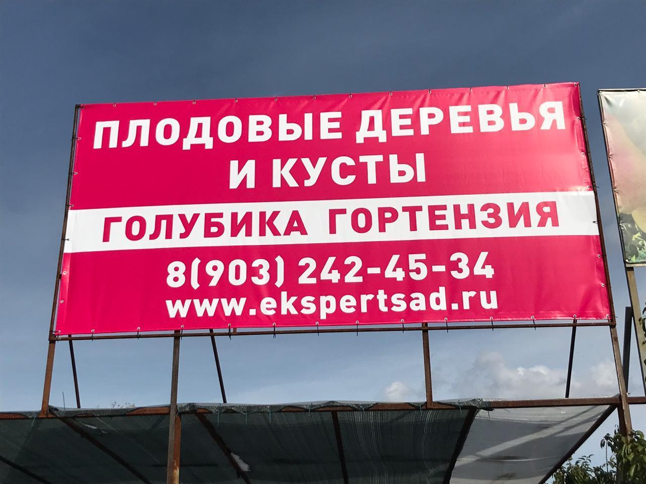 Вывеска Эксперт Сад